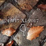 promocja 13 do 17 XI 2017